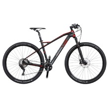 29 palců 4ever Inexxis 1 29'' - model 2018