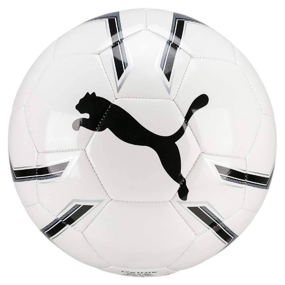 Fotbalový míč Puma Pro Training 2 MS 8281901 bílý